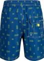 Pánské šortky/plavky RMM008 REGATTA Hadden Board Short II Tyrkysová